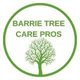 Barrie Tree Care Pros Barrie
